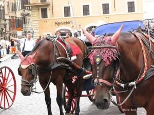 Settembre 2009 Roma 171